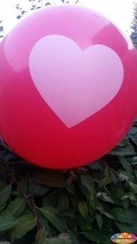 25 stuks Rode ballon met wit hart 30 cm hoge kwaliteit