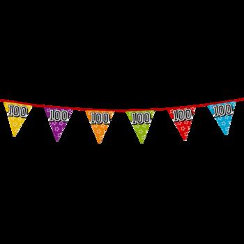Holografische vlaggenlijn 8 m met het cijfer 100