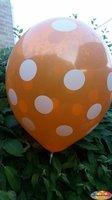 Oranje ballon met witte stippen  30 cm hoge kwaliteit MET LOS LEDLAMPJE VOOR IN BALLON