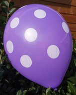 Ballonnenparade Voordeelpak 100 stuks Paarse ballon met witte stippen 30 cm hoge kwaliteit
