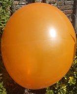 Weggeefactie 131% Ballonnenparade